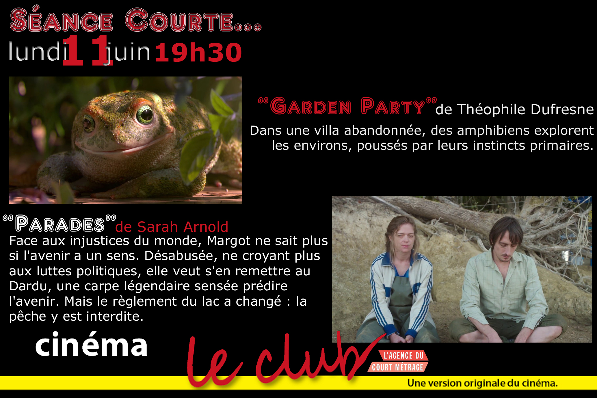 3624e36f19 Art et Essai > Cinéma - LE CLUB